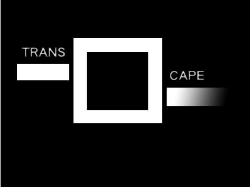 logo_transcape_neu